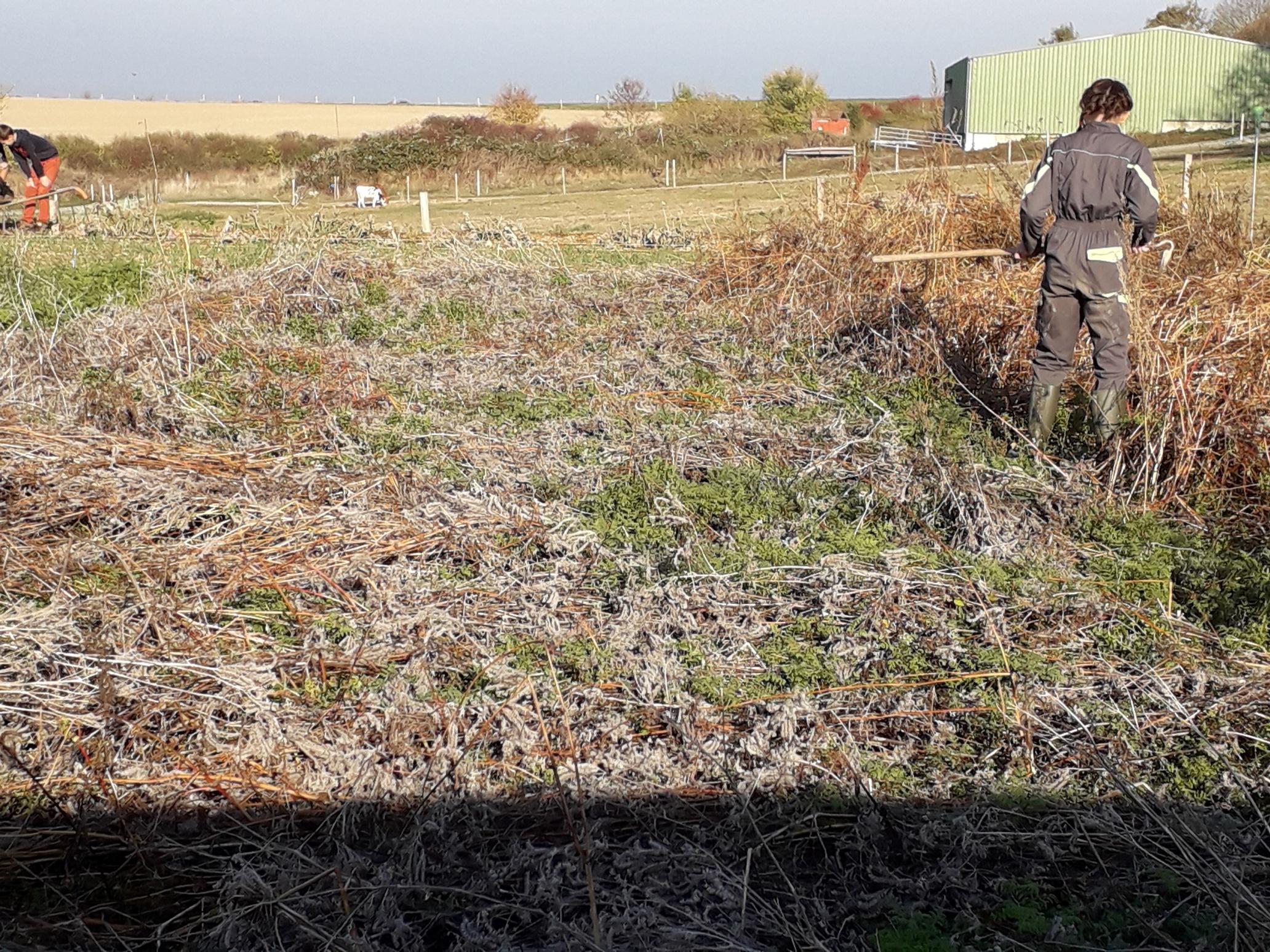 Preparation des sols pour l'hivernage