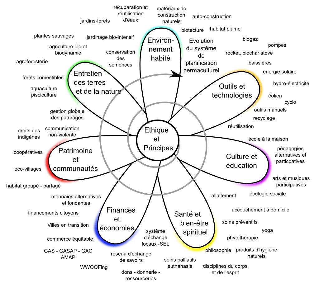Fleur des champs d'application de la permaculture et d'exemples