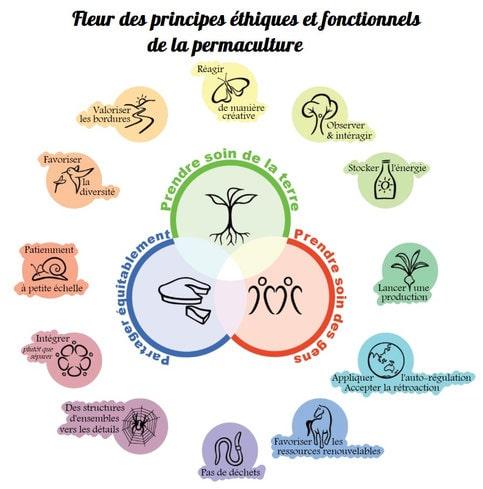 Fleur des principes ethiques et fonctionnels de la permaculture